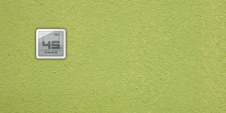 Гігрометр Stadler Form Selina Little білий на стіні зеленій